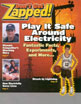 Zapped brochure